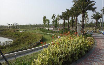 信實公司於110年1月1日起承接國立故宮博物院110年南部院區除草及植栽維護案